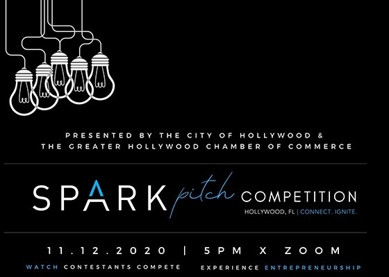 11.12.2020 SPARK Pitch Competition