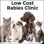 Low Cost Rabies Clinic