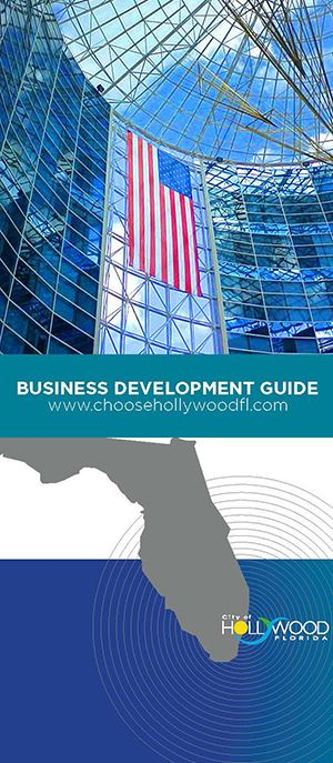 business development guide cover