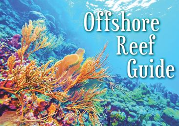 Offshore Reef Guide Spotlight