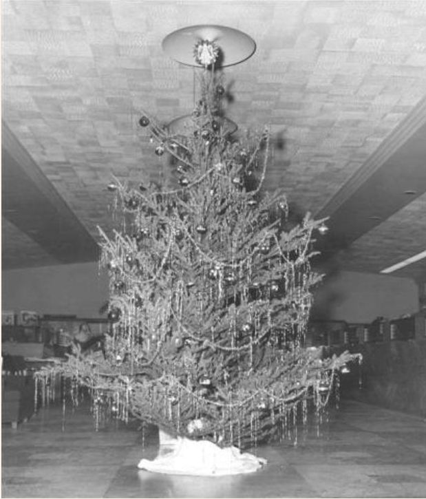 Christmas Tree at Bank of Hollywood