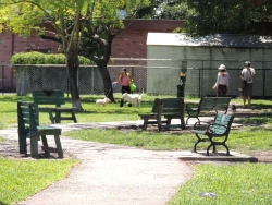 Poinciana Dog Park