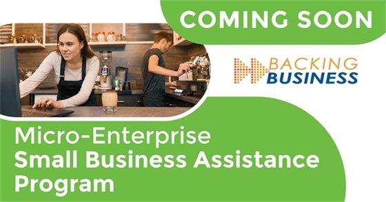 Micro-Enterprise Small Business Assistance Program