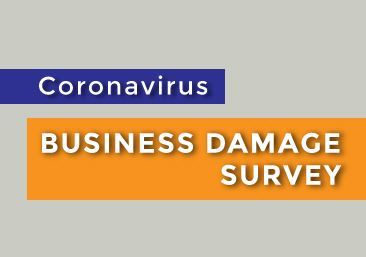 Business Damage Survey